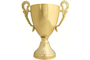 Football winners cup