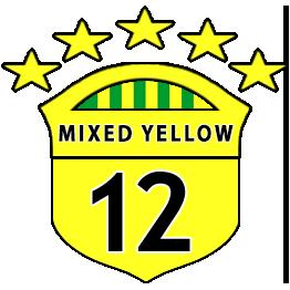 Boys U12 Yellows