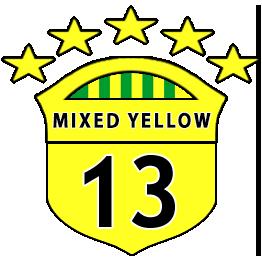 Boys U13 Yellow