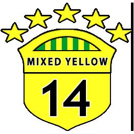 Boys U14 Yellows